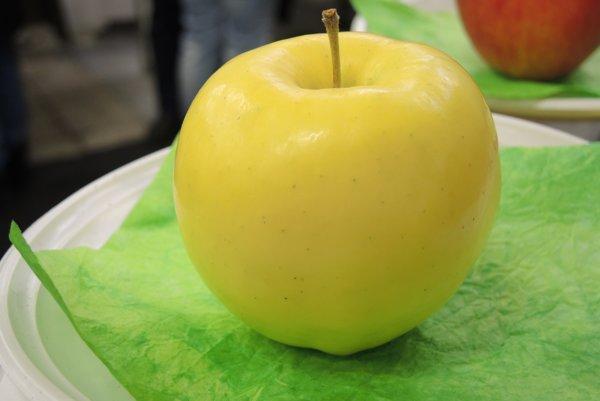 Víťazné jablko pestovateľa zo Šurian.