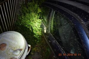 Auto skončilo po nehode v plote.