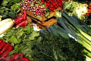 Dôležitým zdrojom vitamínov ale aj minerálov je zelenina. V rastlinách sa minerály nachádzajú v organickej forme, v ktorej ich náš organizmus dokáže lepšie prijať.