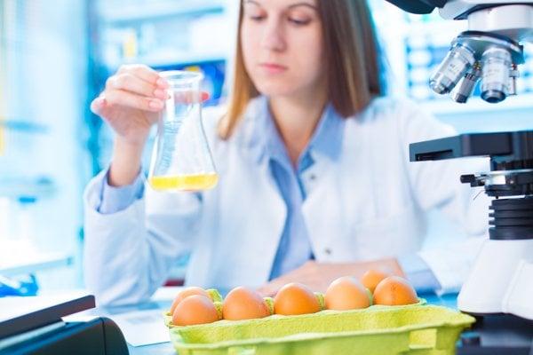 Hlavným zdrojom salmonelózy sú premnožené baktérie v hydinovom mäse alebo vajíčkach.