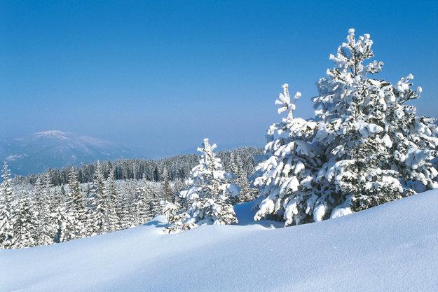Panenskú prírodu Korutánska spoznáte v zime na snežniciach