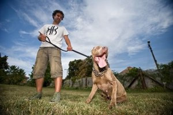 Ostrý pes musí mať aj ostrý výcvik. Chovateľ Patrik Jóba so svojím bandogom.