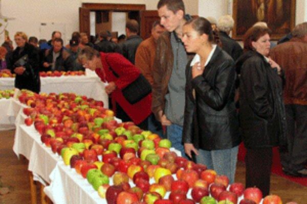 V Opatovciach bude cez víkend výstava ovocia a zeleniny.