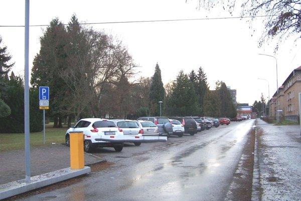 Cena parkovného na Moskovskej ulici v Martine sa meniť od budúceho roka nebude.
