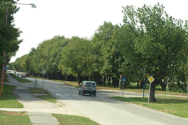 Podobný pohľad cestou do Kamenného mlyna je  už minulosťou.
