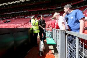 Na snímke policajt so špeciálne vycvičeným psom na vyhľadávanie výbušnín v nedeľu 16. mája 2016. Duel anglickej futbalovej Premier League Manchester United - FC Bournemouth sa z bezpečnostných dôvodov neuskutočnil pre nájdený balíček.