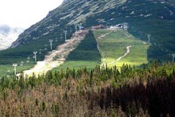 Lesy v Tatrách by mohlo dostať pod svoju právomoc ministerstvo životného prostredia. Nemusí to znamenať, že sa tam bude menej rúbať.