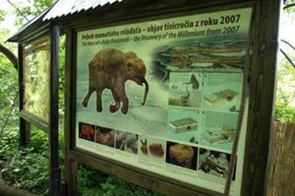 Múzeum praveku môžu využiť nielen návštevníci a turisti, ale aj školské triedy.