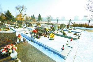 Cintorín na Kamennej ceste. V pozadí sídlisko Prednádražie.