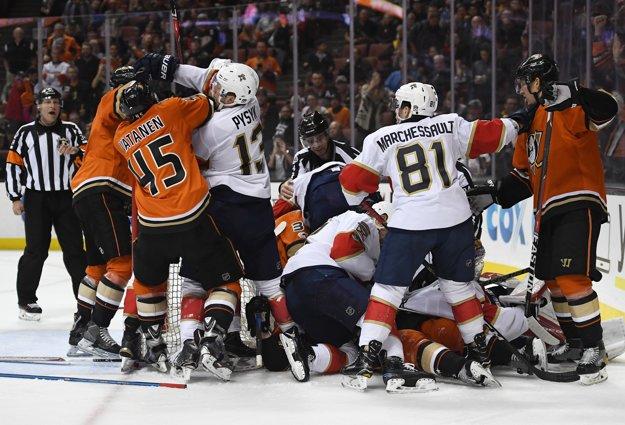Aj takto to vyzeralo počas zápasu Floridy Panthers na ľade Anaheimu Ducks.