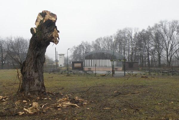 Areál Pod vŕbičkami v Nedožeroch-Brezanoch je prázdny, vysadia v ňom nové dreviny.