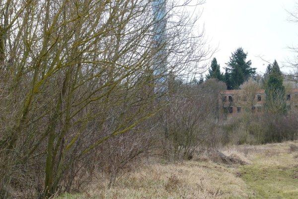 Detenčný ústav má stáť na mieste lesíka, vedľa areálu psychiatrickej nemocnice. V pozadí rozostavaný pavilón, ktorý mali pôvodne na tieto účely rekonštruovať.