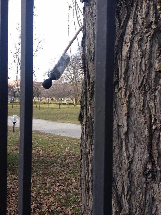 Podozrivé zariadenie v záhrade prezidentského paláca.