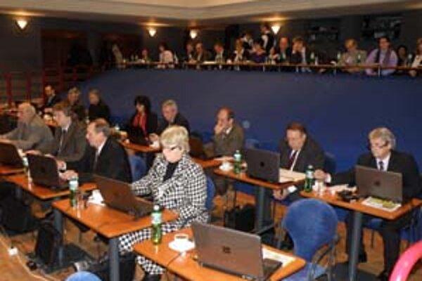 Za rozpočet mesta na rok 2010 hlasovalo všetkých 29 prítomných poslancov.