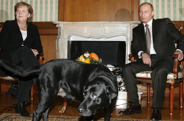 Putinov pes na stretnutí s Merkelovou.