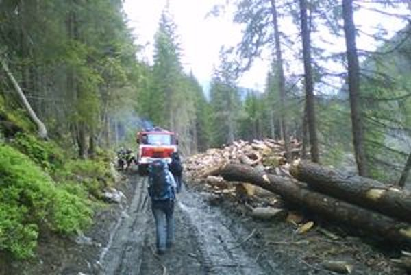 Škody, ktoré spôsobila víchrica na lesných porastoch zatiaľ nie sú známe. V našom okrese boli na majetku ľudí minimálne.