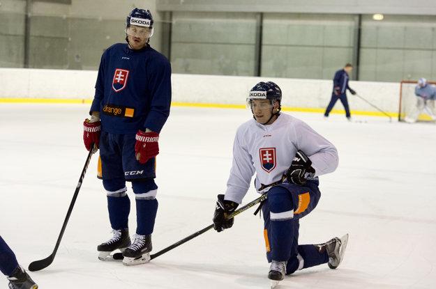 Dravecký (vľavo) verí, že bojovnosť bude silnou stránkou slovenského tímu na MS.