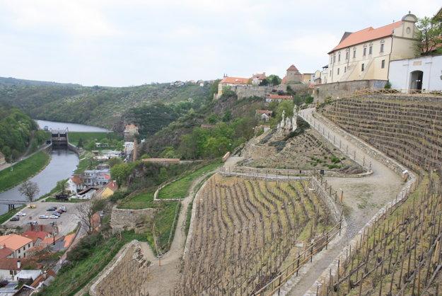 Znojmo sa preslávilo okrem dávnej histórie a uhoriek aj vynikajúcim vínom. Obnovené vinohrady sa vinú hneď pod mestskými hradbami.