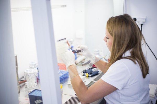 Slovenskí vedci majú obavy, že súťažných peňazí na výskum a vývoj bude menej.