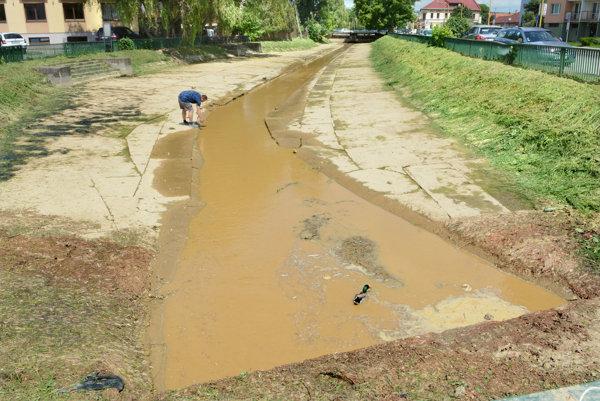 Upcháva sa. Niektoré úseky sú naplnené vodou, avšak pomáhajú tomu nánosy a stojatá voda zapácha.