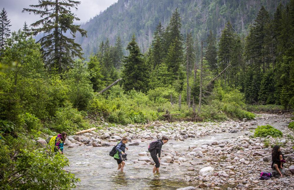 V rieke Belá je aj v lete teplota vody štyri stupne. Kto však chce z Tichej doliny do divočiny, musí ju prebrodiť.