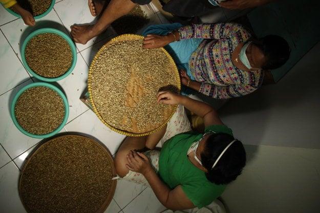 Zelená káva je ďalším novým produktom