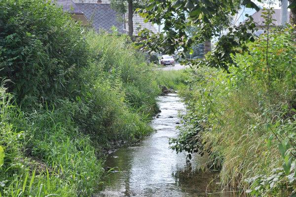 Mínu našli aj v potoku. Ilustračné foto.