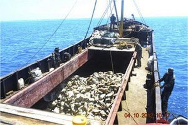 Čínski rybári svoje úlovky nevrátili.