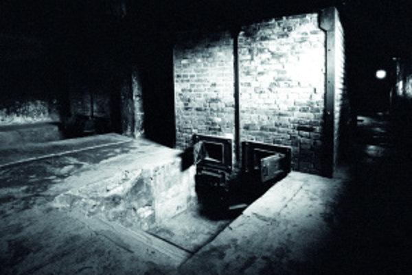 Diabolský plán: najprv Židov izolovali, potom ich zbavili majetku, vyhnali zdomov asústredili vgetách anakoniec vyviezli do vyhladzovacích táborov, kde skončili vplynových komorách a krematóriách