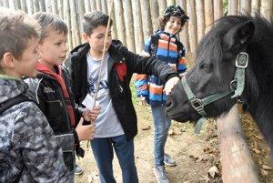 Na snímke deti z miestnych škôl s poníkom.