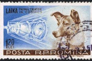 Lajka na poštovej známke.