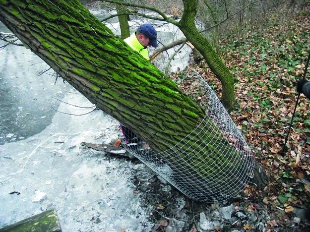 Stromy okolo jazera Sihoť dalo mesto koncom minulého roka oplotiť.