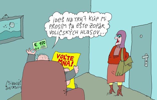 Ako vidí volebný deň karikaturista Mikuláš Sliacky.