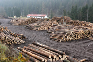 Sklad dreva pri železničnej stanici v Červenej Skale.