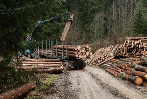 Ťažba dreva na Muránskej planine