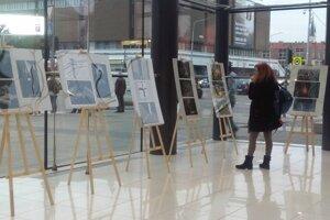 Výstavu si môžete pozrieť do 24. novembra.