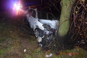 Auto sa vyhlo cyklistovi, narazilo však do stromu a začalo horieť.