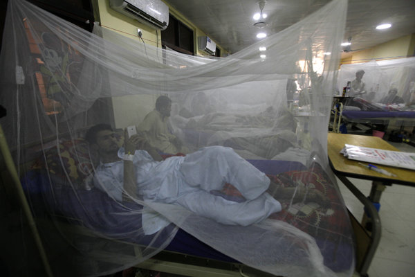 Pacient nakazený vírusom denque.