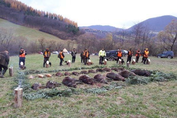 Najmä v období novembra a decembra sa konajú slávnostné poľovačky. Ich účelom  je redukcia stavu diviačej zveri.