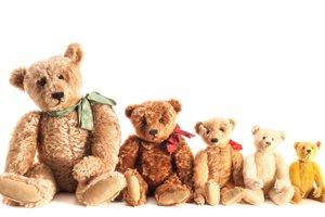 Plyšové medvede za svoju obľubu vďačia neúspešnej poľovačke prezidenta Teddyho Roosevelta.