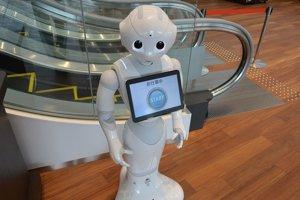 Pre Fabia slúžil ako predloha robot Pepper.