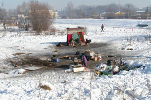 Teplovodné kanály sú pri Hrone každú zimu obývané.