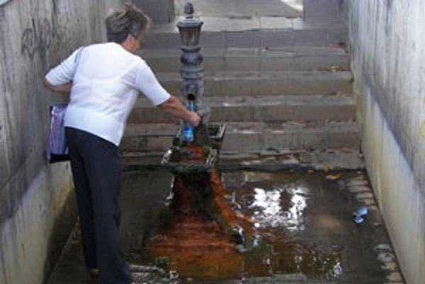 Prameň je vyhľadávaným zdrojom minerálnej vody.