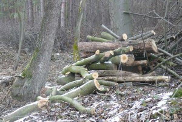 Za kubík dreva, ktoré si nachystáte sami zaplatíte osemnásť eur.