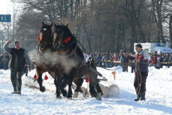 V Hriňovej súťažilo osemnásť furmanských záprahov.