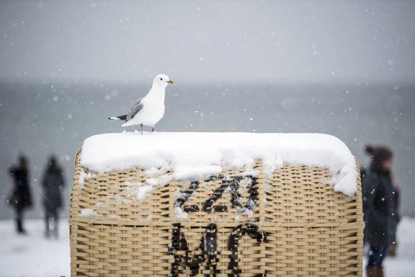 Snežilo aj v baltskom letovisku Dierhagen.