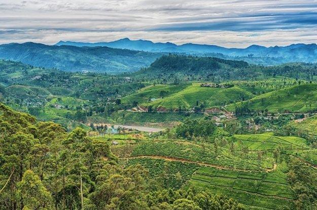 Príroda Srí Lanky