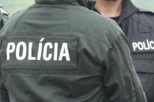 Policajti obvinili ženu z poškodzovania cudzej veci.