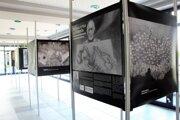 Obrazy poľského umelca o hrôzach   tábore smrti vystavia koncom mája aj v Kysuckej knižnici v Čadci.