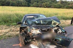 Vodiča octavie záchranári resuscitovali, zachrániť sa im ho nepodarilo.